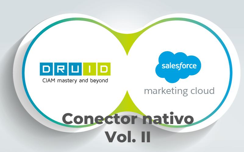 DruID & Salesforce Integration Vol. II