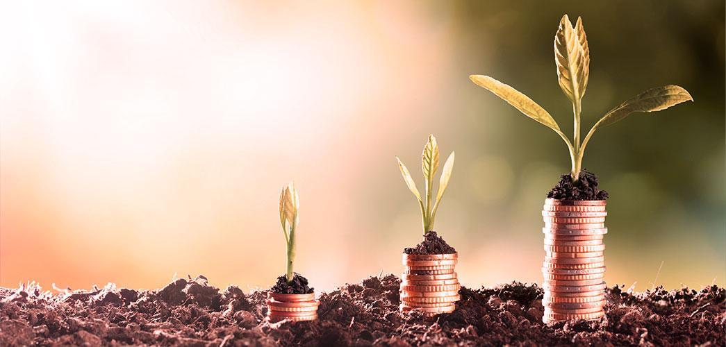 El destino de cada euro y los programas de fidelización flexibles